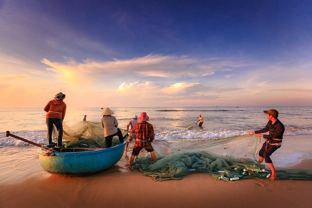 Team of fishermen at the shore bringing in nets